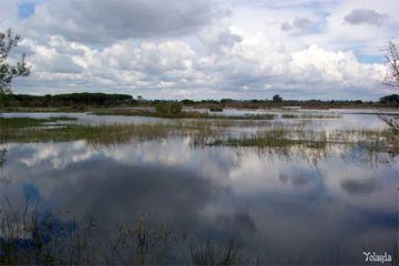 Las 7 amenazas del Parque de Doñana